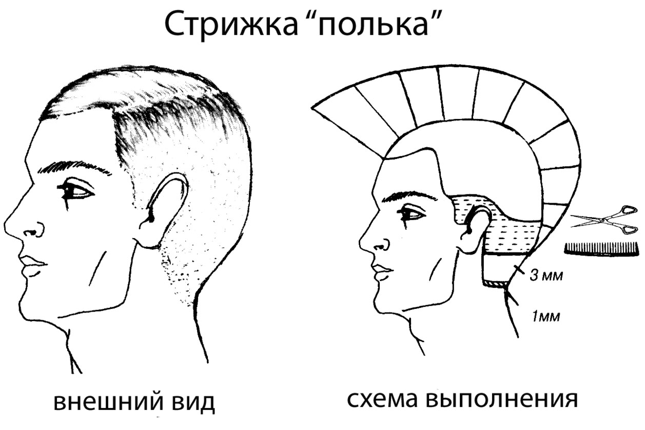 Схема стрижки мужской модельной стрижки