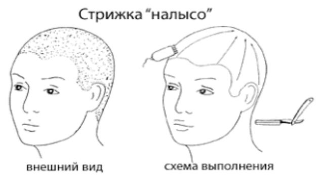 Схема стрижки наголо «под ноль»