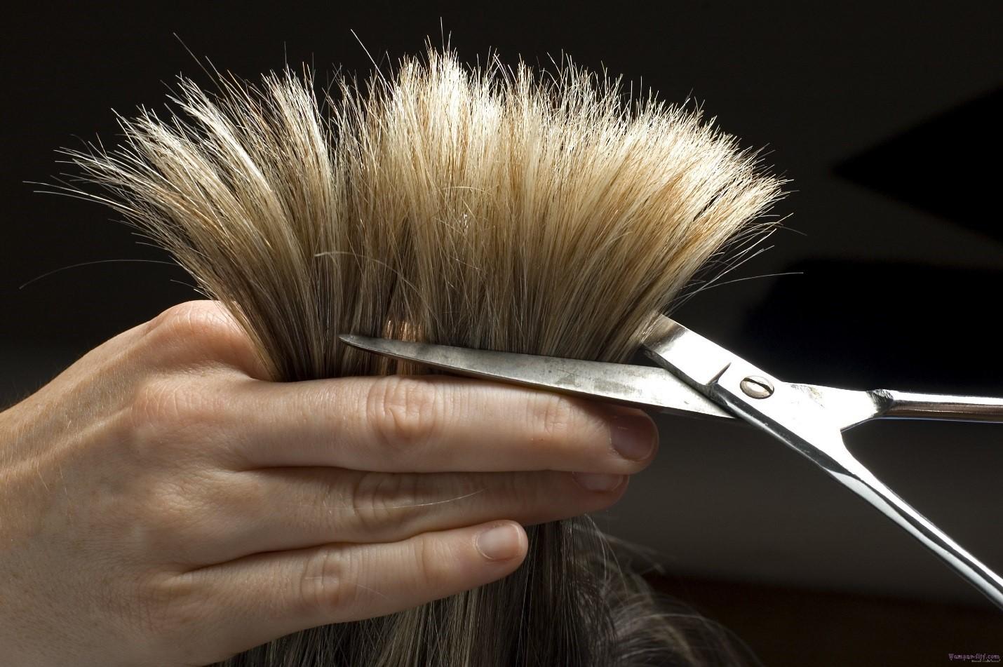 Полезли волосы от репейного масла