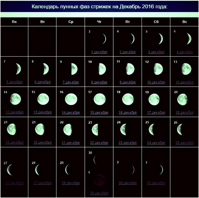 когда будет растущая луна в декабре 2016 года мериносов