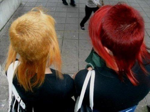 Жёлтая и красная окраска головы