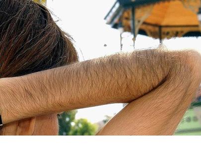 Волосы на ркуках