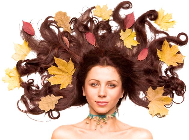 Девушка с коричневыми волосами и осенними листьями